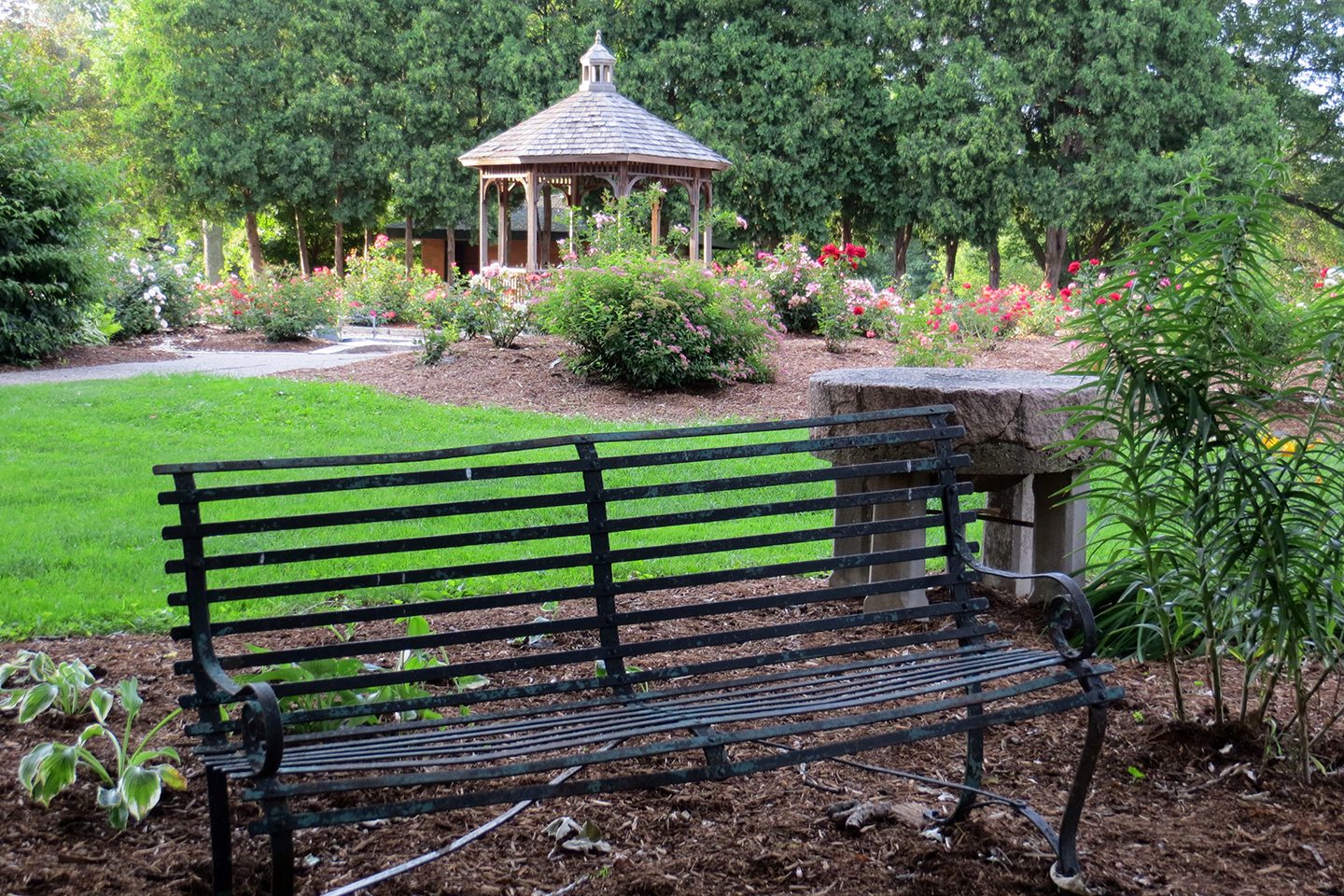 weed park bench and gazebo with trees and grass