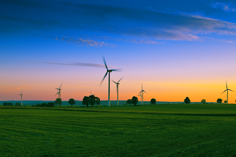wind turbine farm with green grass surrounding