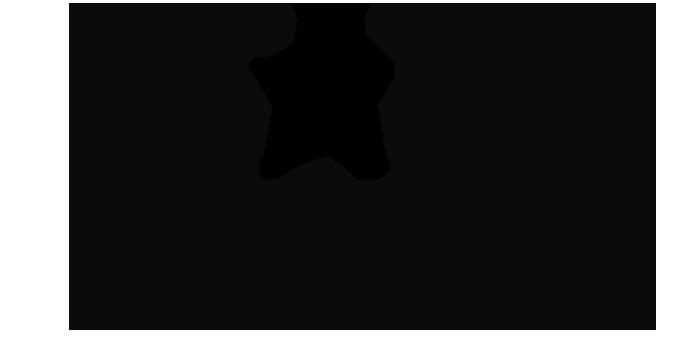 starzencore logo